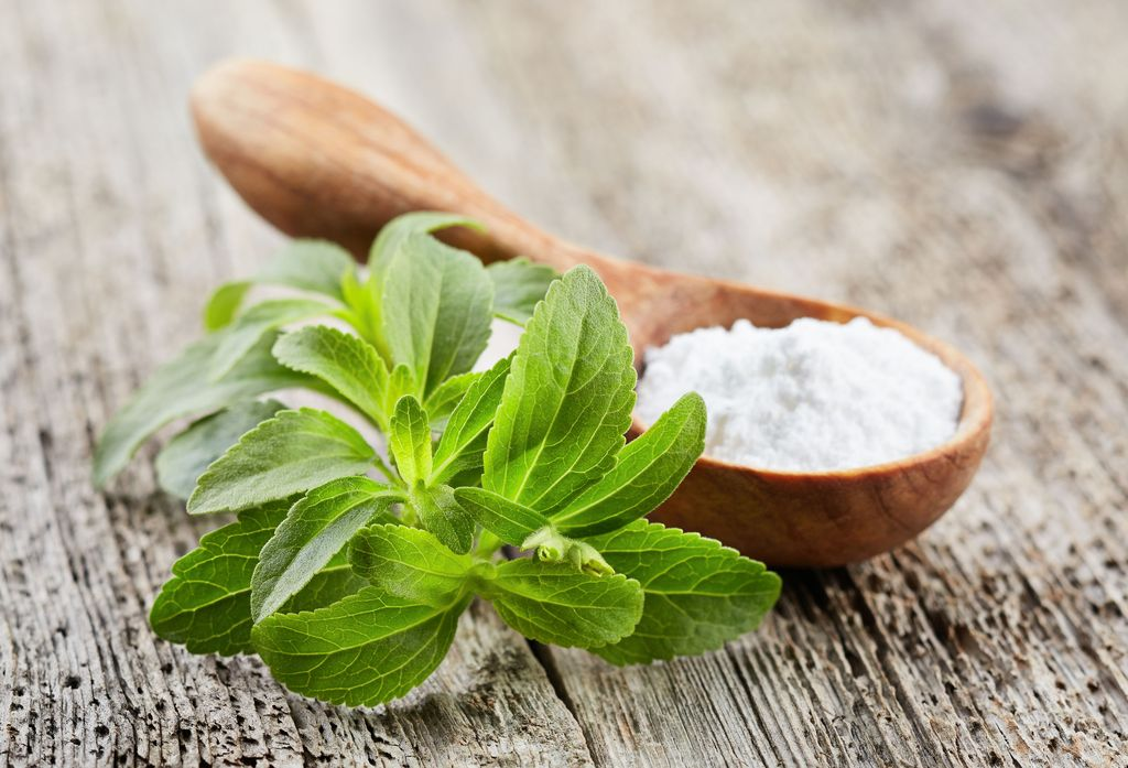 Is Stevia Safe the only obstruction is that large firms take a long?