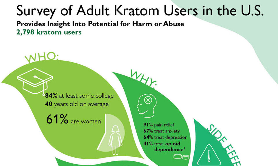 Just How You Can (Do) Kratom Powder Practically Immediately